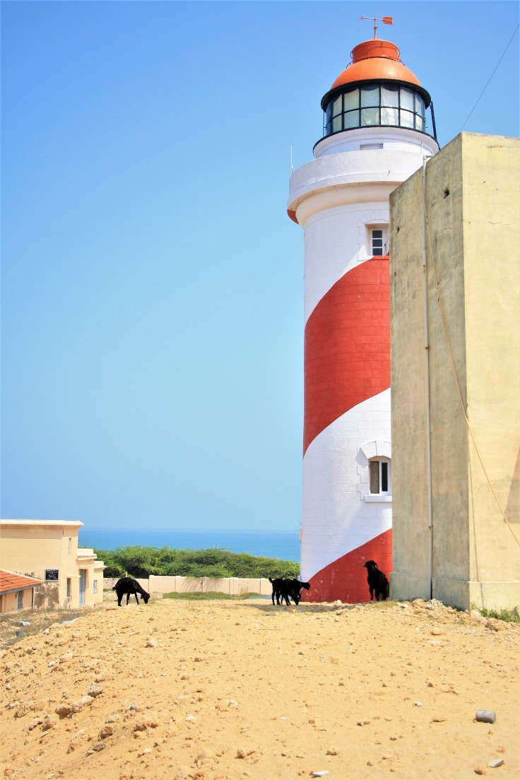 17. Lighthouse